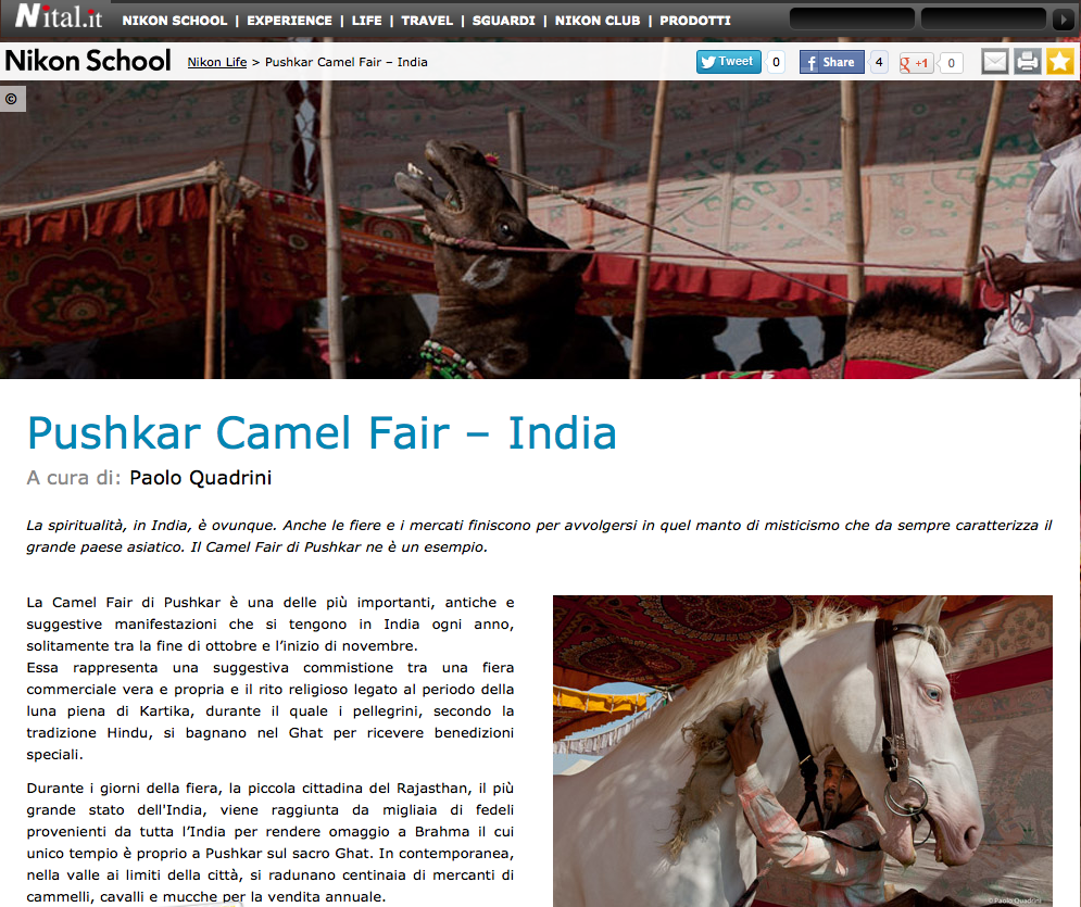 Nikon School - Nikon Life - Pushkar Camel Fair – India